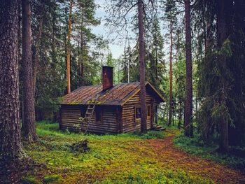 Finlandia ofrece un viaje gratis a su país para aprender a ser feliz! Te animas a participar?